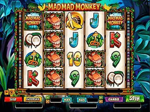 Mad Mad Monkey Slot Gameplay