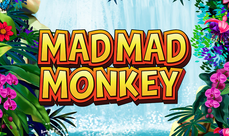 Mad Mad Monkey Review